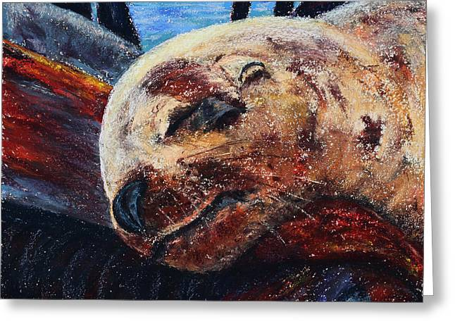 Icy Pastels Greeting Cards - Harbor Seal Greeting Card by Diana Wade