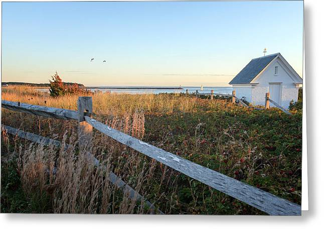Harbor Shed Greeting Card by Bill Wakeley