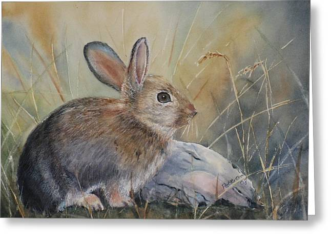 Hare Greeting Cards - Hare at Sunset Greeting Card by Patricia Pushaw