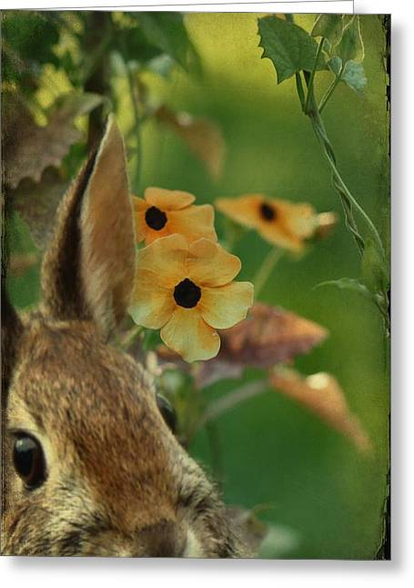Hare Greeting Cards - Hare In The Vines Greeting Card by Gothicolors Donna Snyder