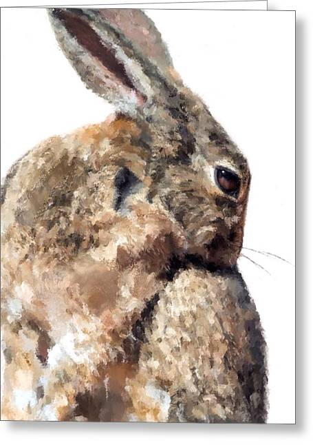 Cushions Mixed Media Greeting Cards - Hare Greeting Card by Mark Taylor