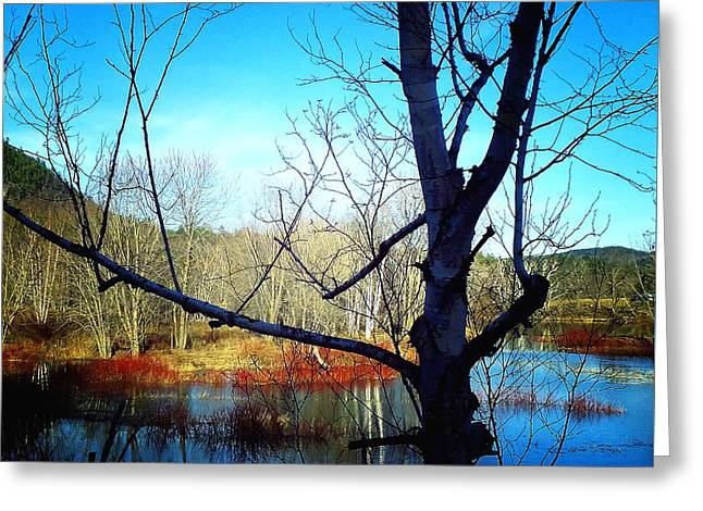 Androscoggin Greeting Cards - Harmony At Rumford Center Greeting Card by Mike Breau