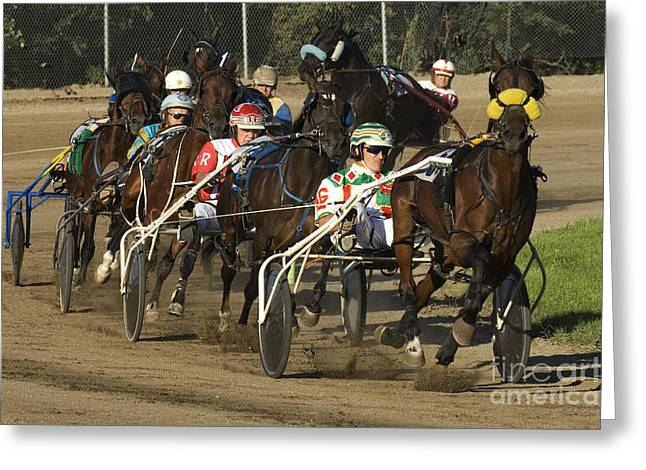 Creative Photography Greeting Cards - Harness Racing 9 Greeting Card by Bob Christopher