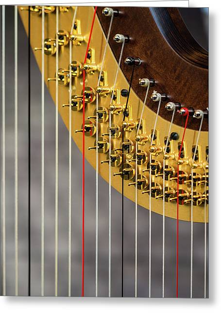 Harp Strings Greeting Card by Marco Oliveira