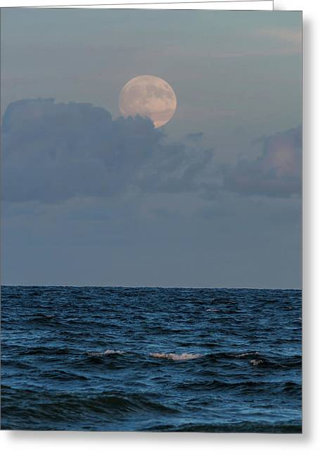 Harvest Moon Blues New Jersey Greeting Card by Terry DeLuco