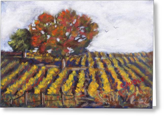 Vineyard Landscape Pastels Greeting Cards - Harvest Time Greeting Card by Ann Caudle