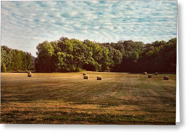 Tennessee Hay Bales Greeting Cards - Harvest Time Greeting Card by Jai Johnson