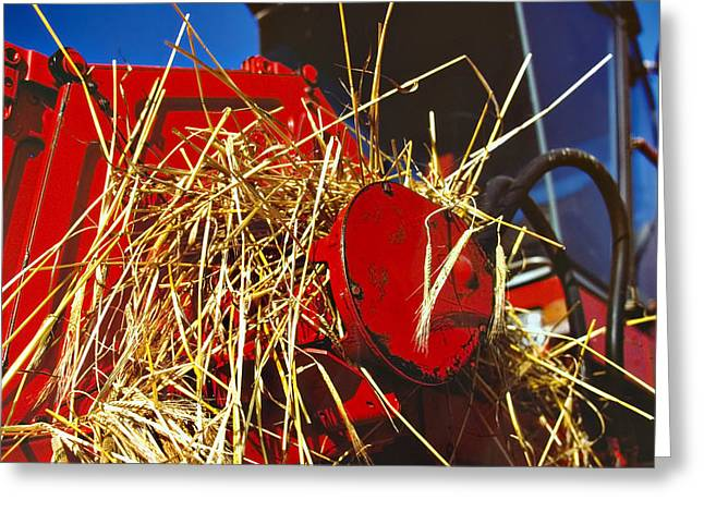 harvesting Greeting Card by Meirion Matthias