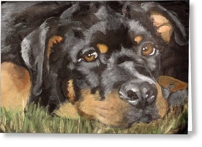 Puppies Paintings Greeting Cards - Harvey Greeting Card by Carol Russell