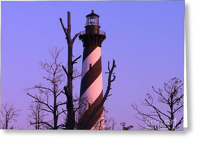 N.c. Greeting Cards - Hatteras Light and Tree Greeting Card by Al Powell Photography USA