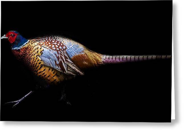 Have A Pheasant Day.. Greeting Card by Martin Newman