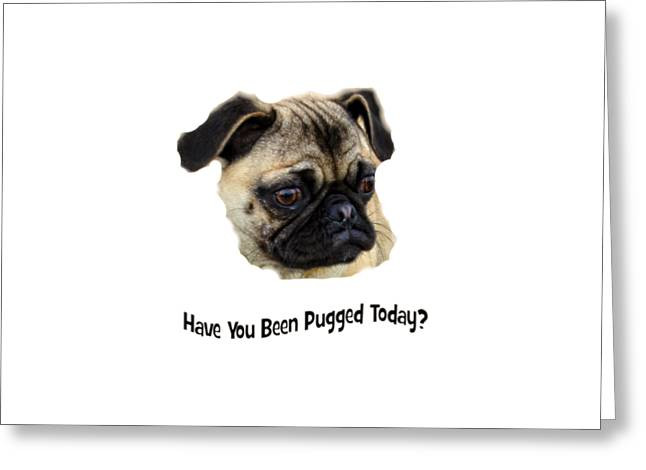 Puppies Photographs Greeting Cards - Have You Been Pugged Today? Greeting Card by Image Takers Photography LLC - Carol Haddon