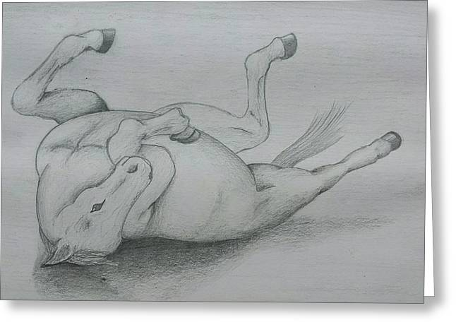 Wild Life Drawings Greeting Cards - Having a good ol roll Greeting Card by Victory Peebles