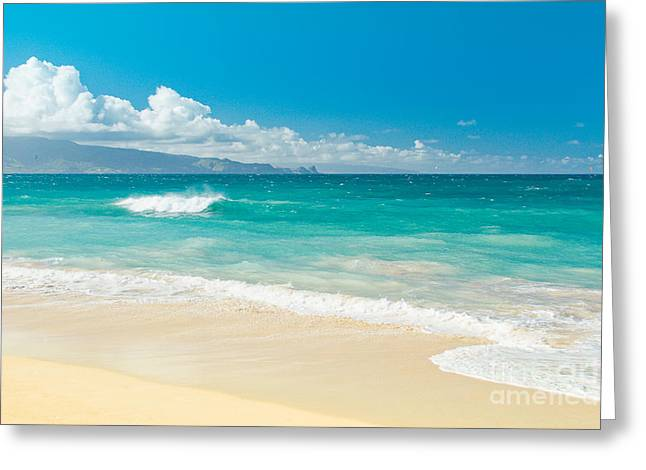 Hawaii Beach Treasures Greeting Card by Sharon Mau