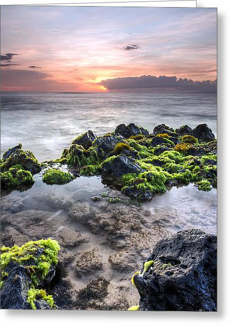 Tide Pooling Greeting Cards - Hawaii Tide Pool Sunset Greeting Card by Dustin K Ryan