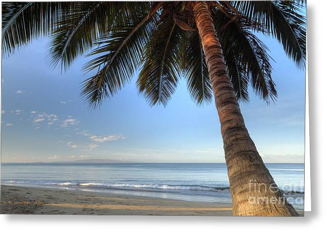Sunrise On Beach Greeting Cards - Hawaiian Coconut Palm Sunrise 2 Greeting Card by Dustin K Ryan