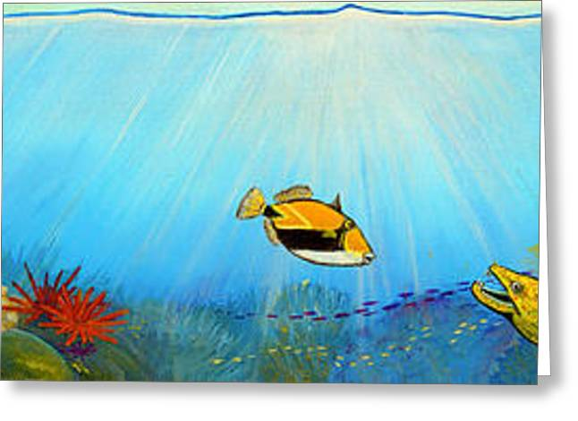 Snorkel Greeting Cards - Hawaiian Sea Life Greeting Card by Jerome Stumphauzer