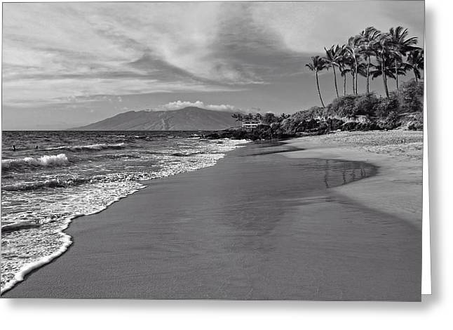 Swimmers Greeting Cards - Hawaiian Solitude Greeting Card by Dan Orchard