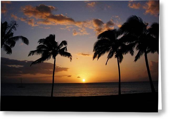 Palm Trees Greeting Cards - Hawaiian Sunset Greeting Card by Kurt Van Wagner