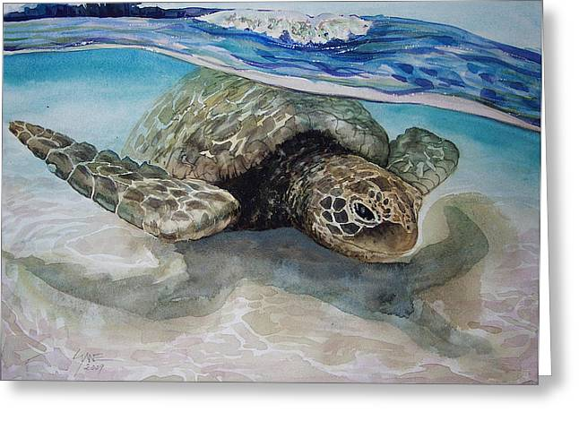Hawaiin Turtle Greeting Card by Lynne Haines