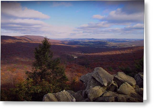 Mountain Cabin Greeting Cards - Hawk Mountain Sanctuary Greeting Card by David Dehner