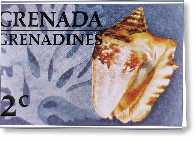 Marine Mollusc Paintings Greeting Cards - Hawk-wing Conch Greeting Card by Lanjee Chee
