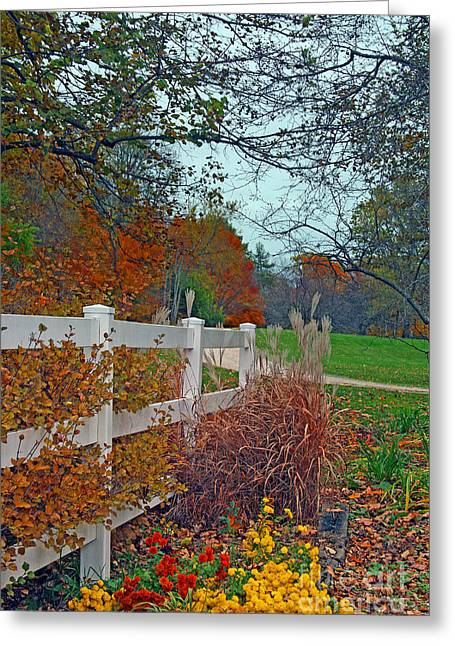 Greeting Cards - Hawthorn Hollow Flowers and Grasses Greeting Card by Kay Novy
