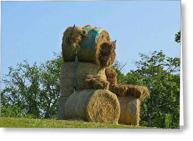 Animal Sculpture Sculptures Greeting Cards - Hay Bale Teddy Bear Greeting Card by John Malone