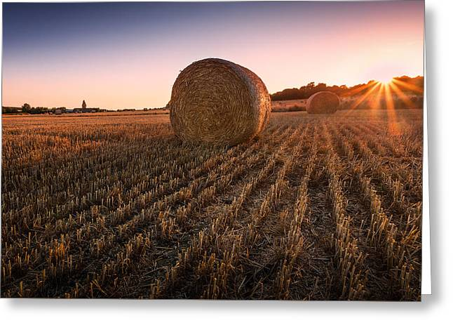 Hay Bale Greeting Cards - Hay bales at Sunset Greeting Card by Ian Hufton