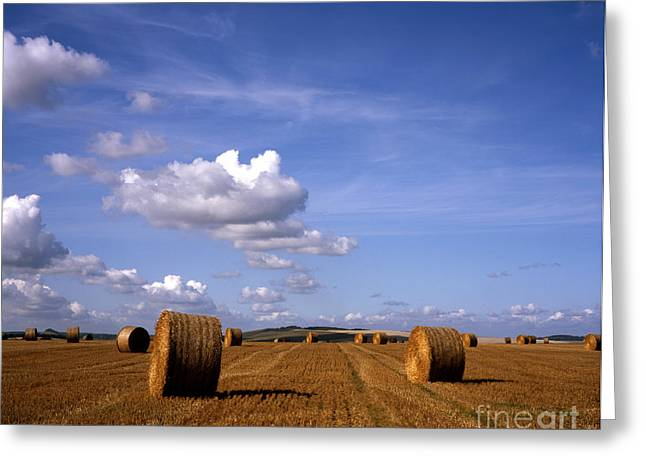 Hay Bales Greeting Cards - Hay Bales in a field on The Wiltshire Downs  Warminster Wiltshire England Greeting Card by Michael Walters