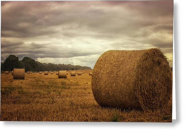Hay Bales Greeting Card by Martin Newman