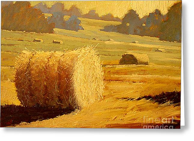 Hay Bales Of Bordeaux Greeting Card by Robert Lewis