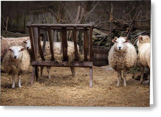 Barn Yard Greeting Cards - Hay Day Greeting Card by Robin-lee Vieira