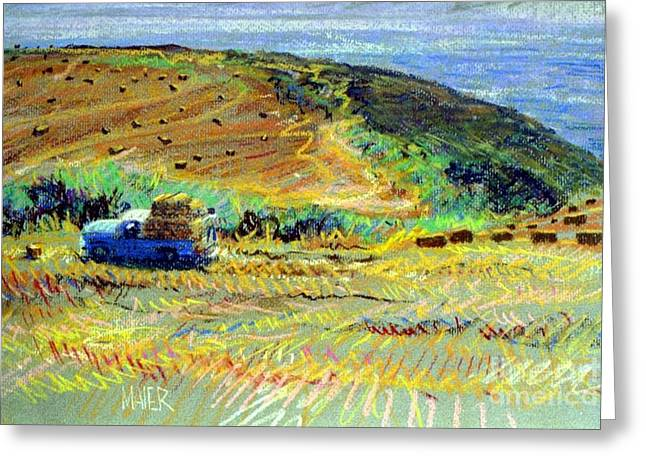 Bay Pastels Greeting Cards - Hay Harvest on the Coast Greeting Card by Donald Maier