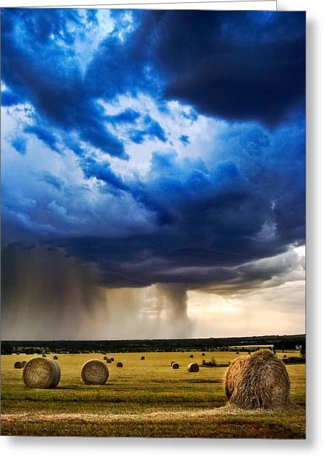 Hay In The Storm Greeting Card by Eric Benjamin