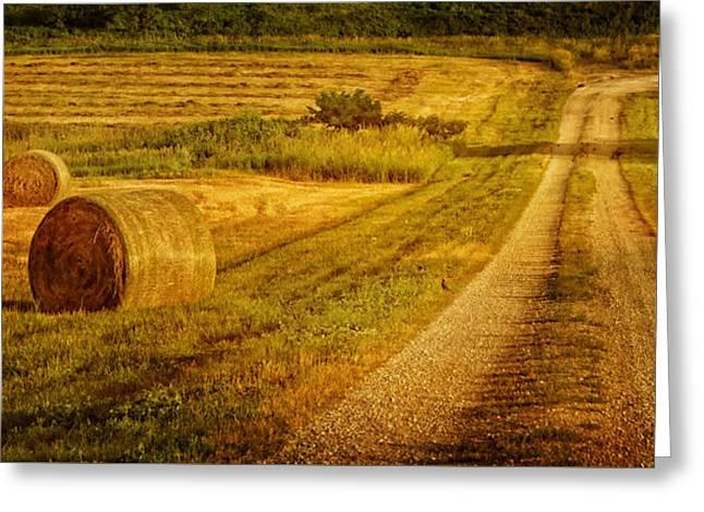 Hay Rolls - Country Road Greeting Card by Nikolyn McDonald