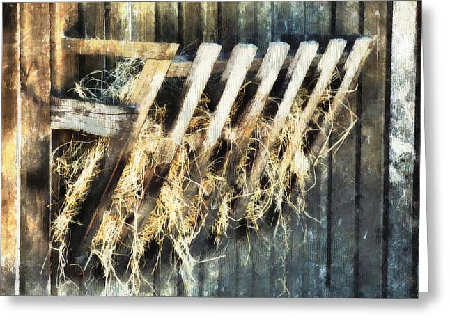 Weatherboard Greeting Cards - Hay  Greeting Card by Steve Taylor