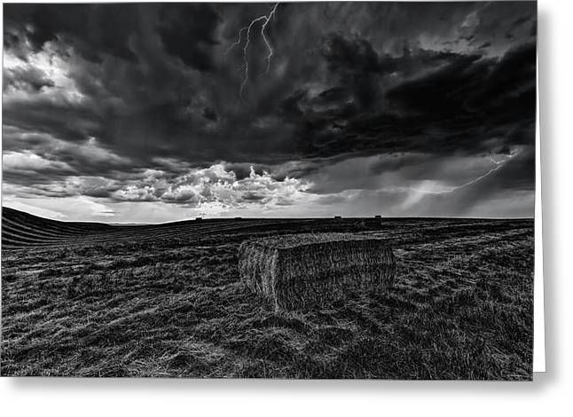 Hay Storm Black And White Greeting Card by Mark Kiver