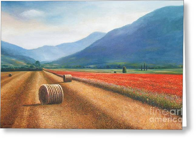 Haybales In Italy Greeting Card by Ann  Cockerill