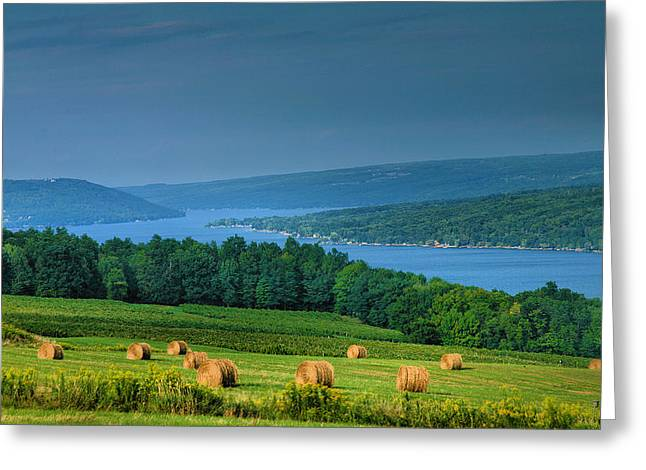 Hayfield And Lake I  Greeting Card by Steven Ainsworth