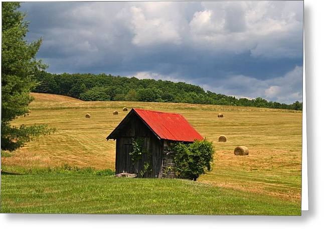 Shed Greeting Cards - Hayfield Greeting Card by Kathryn Meyer