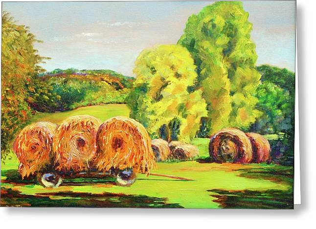 Haying Greeting Cards - Haying in Columbia County Greeting Card by Barbara C Thompson