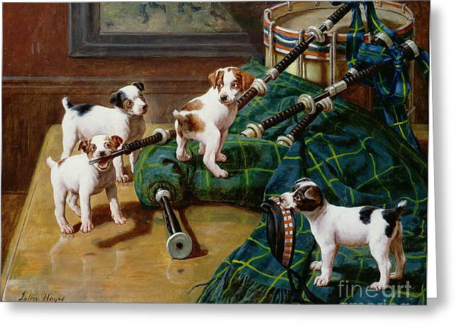 Doggie Greeting Cards - He Who Pays the Piper Calls the Tune Greeting Card by John Hayes