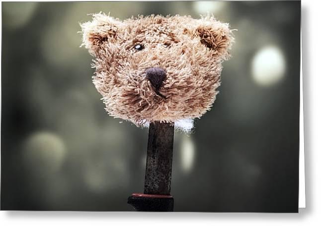 head of a teddy Greeting Card by Joana Kruse