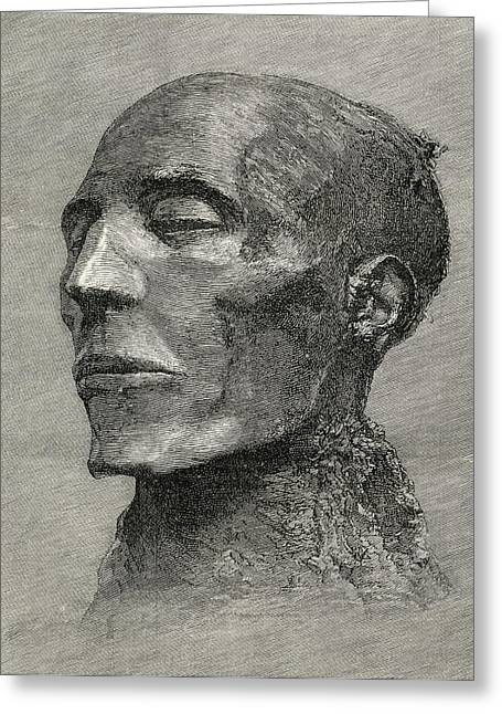 Pharaoh Drawings Greeting Cards - Head Of The Mummy Of Menmaatre Seti I Greeting Card by Ken Welsh