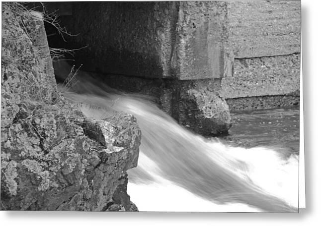 Spring Floods Drawings Greeting Cards - Head of the Tide Spring Greeting Card by Karen Giles
