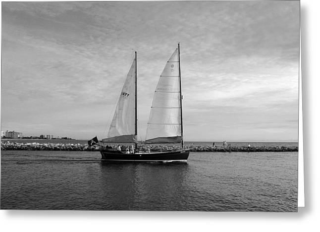 Sailboat Photos Greeting Cards - Headed Out to Sea Greeting Card by Robert Wilder Jr