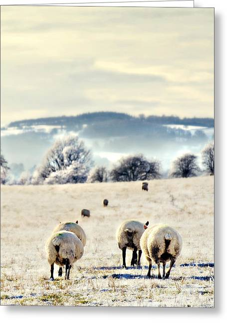 Queue Greeting Cards - Heading Home Greeting Card by Meirion Matthias