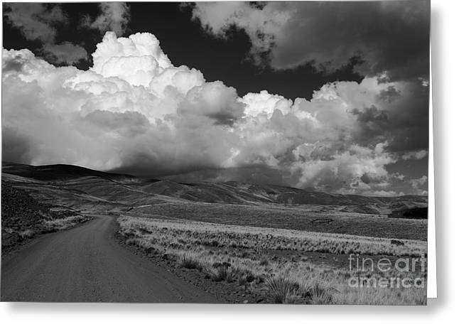 Cumulus Nimbus Greeting Cards - Heading towards the storm Greeting Card by James Brunker