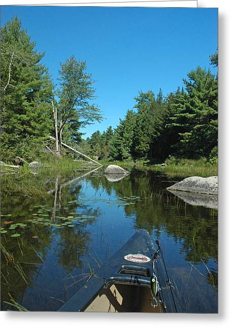 Down East Maine Greeting Cards - Headwaters Greeting Card by Robert Anschutz